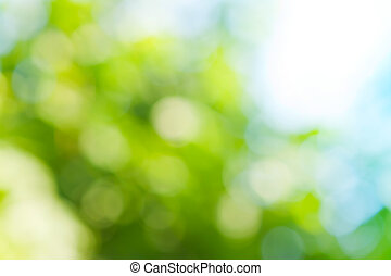 lente, kleuren, groene achtergrond, vaag