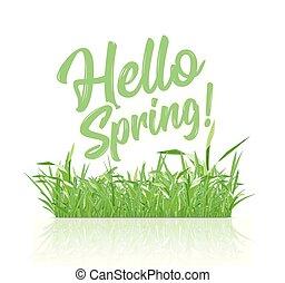 lente, lente, hallo, achtergrond, tekst, witte , gras, boodschap