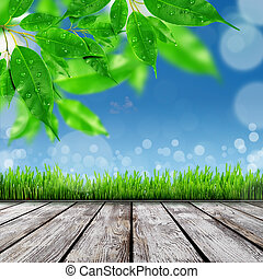 lente, natuur, achtergrond, met, gras