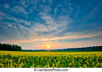lente, ondergaande zon