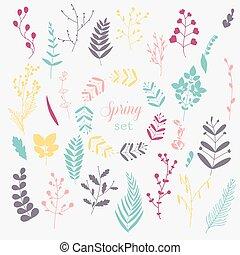 lente, paardenbloem, verzameling, bladeren, bloemen, grass.