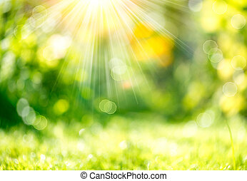 lente, sunbeams, benevelde achtergrond, natuur