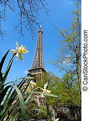 lente, toren, eiffel, parijs