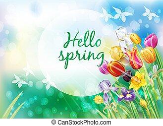 lente, veelkleurig, bloemen, achtergrond