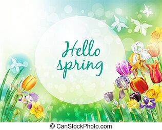 lente, veelkleurig, vector, bloemen, achtergrond