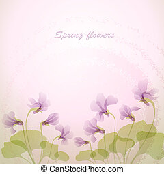 lente, viooltje, flowers., teder, backg