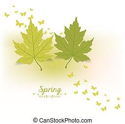 lente, vlinder, achtergrond