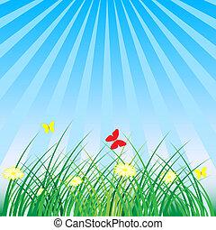 lente, zomer, -, achtergrond, natuur