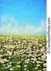 lente, zomer, achtergrond