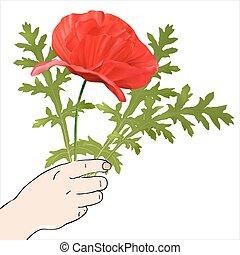 lentebloemen, hand