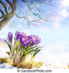 lentebloemen, kunst