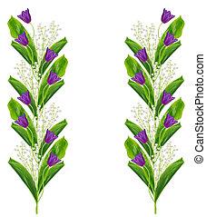 lentebloemen, tulpen, vrijstaand, op wit, achtergrond.