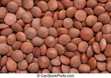 lentil background