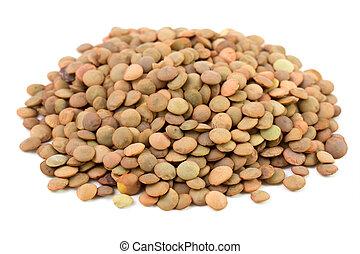 lentil on white background