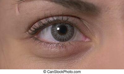 lentille, contact, oeil, femme
