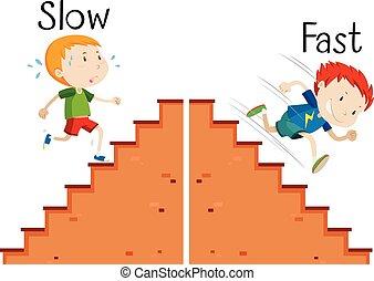 lento, palabras, rápido, contrario