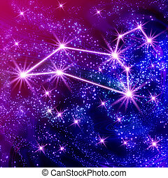 Leo constellation in the star sky