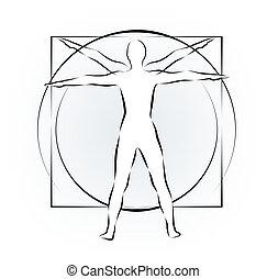 leonardo body study - body study of figure with golden cut