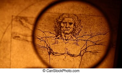 Leonardo da Vinci anatomy drawing