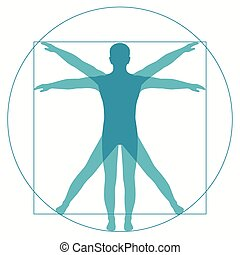 Vetruvian Man - Leonardo Da Vinci Vetruvian Man, human ...