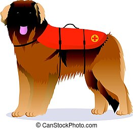 Leonberger lifesaver dog