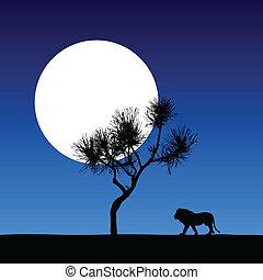 leone, in, il, chiaro di luna, vettore, illust