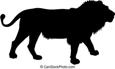 leone, silhouette, sfondo bianco