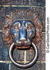 leones dirigen, aldaba
