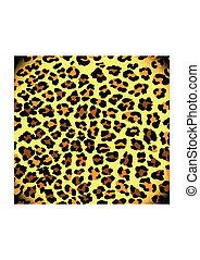 leopárd, motívum