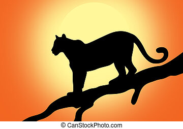 Leopard against sunrise