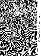 Leopard and zebra with background