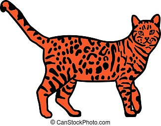 Leopard bengal cat orange