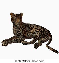 Leopard - 3D Animal