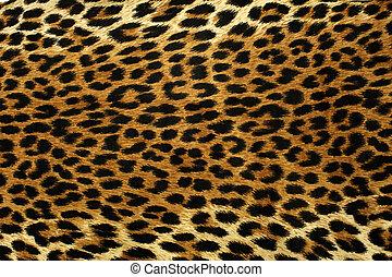 leopard, fläckar