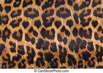 leopard flå