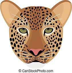 Leopard head isolated on white