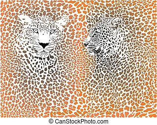 Leopard pattern with head - stock vector.