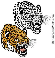 leopardo, cabeça