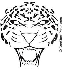leopardo, cara