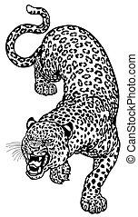 leopardo, enojado, negro, blanco