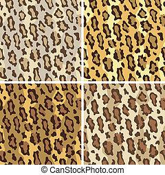 leopardo, patrón, manso, puntos