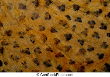 leopardo, struttura, pelle