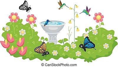 lepke, kolibri, madár, kert, fürdőkád
