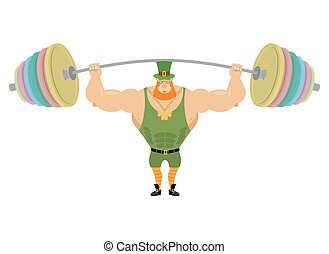 Leprechaun and barbell sports. Bench press barbell above his head. Exercises for shoulders. Strong, powerful old man with Red Beard. Fairy dwarf. Golden clover at the chain. Character for St. Patrick's day in Ireland