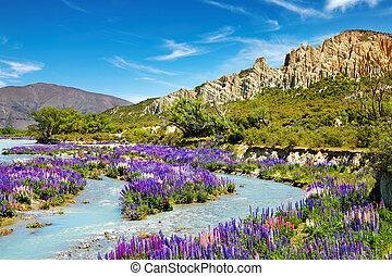 lera, klippor, scenisk, reservera, nya zeeland