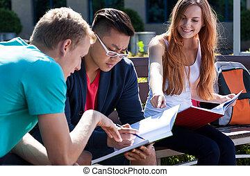 leren, samen, gedurende, zomer