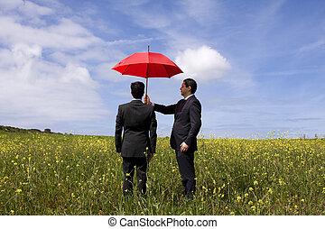 les, agent assurance, protection