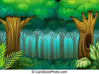 les, hlubina