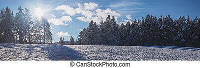 les, kopyto, krajina, sněžný, obzor, konzervativní, lesklý, zima, snímek, nebe, slunit se, běloba mračno