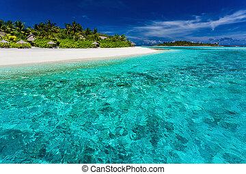 les, mieux, snorkeling, emplacement, sur, les, recours, plage, dans, maldives